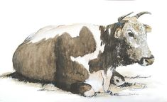 Nguni Resting; watercolour; 31x19cm. Watercolours, Watercolor Paintings, Moose Art, Wildlife, Rest, African, Birds, Animals, Animales