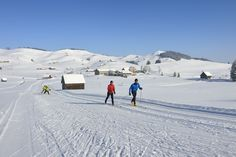 Langlaufen in herrlicher Kulisse Switzerland, Skiing, Snow, Outdoor, Beautiful, Long Distance, Backdrops, Tourism, Ski
