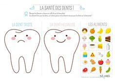 Exercice : les aliments et les dents - Momes.net