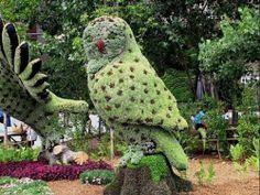 Montreal Botanical Garden: Owl Mosaiculture