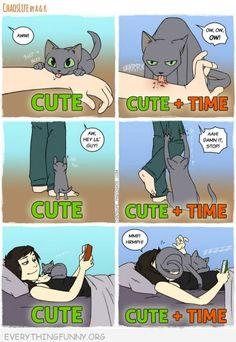 9 New Comics All Cat Owners Will Understand! - Patrizia Eckerl - - 9 New Comics All Cat Owners Will Understand! 9 New Comics All Cat Owners Will Understand! I Love Cats, Crazy Cats, Cute Cats, Animal Memes, Funny Animals, Cute Animals, Animal Humor, Cat Comics, Funny Comics