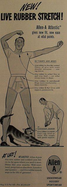 Sous-vêtements masculins. Cats will sell men's underwear!