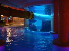 swimming pools with slides | Swimming pool, slide and aquarium.