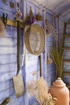 Potting shed with faded periwinkle paint.