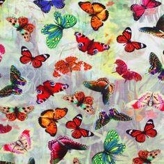 Baumwolljersey Digitaldruck - Butterfly Garden