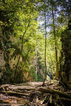 Slovak Paradise, Slovakia (by Marcin Jakubowski) Underground Caves, Bratislava Slovakia, Continental Europe, Places In Europe, Central Europe, Czech Republic, Homeland, Austria, Elsa