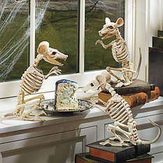 Grandin Road Skeleton rats--$15 each