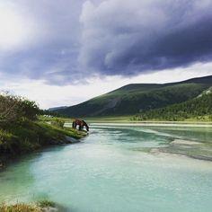 #Аккем #алтай #лошадки #nature #lake #horses #hiking #peaceful #instaaltay