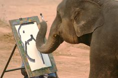 SE ASIA- Chiang Mai- Elephant Artists- I have got to see this with my own eyes. What amazing creatures. Chiang Mai Elephant, Thai Elephant, Elephant Love, Elephant Art, Elephant Paintings, Elephas Maximus, Strongest Animal, Gentle Giant, Caricatures