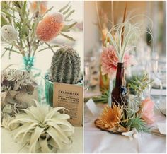 Like the air plants here. Cactus probably wouldn't work with our venue. Like the brown bottle with tiny assortments displayed all around.