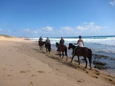 #TofoBeach is located in the district of Jangamo, Inhambane Province, Mozambique, Africa. Tofo Beach is a popular tourists' destination of Africa's eastern coast. For more details visit @ http://beach-tours.tourtravelworld.com/exoctic-beaches/tofo-beach.htm