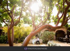 Mission San Juan Capistrano Engagement | Matt and Fiona