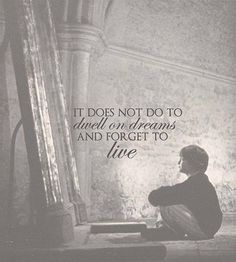 """""""It does not do to dwell on dreams and forget to live."""" Albus Dumbledore. harry potter"""