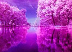 purple..