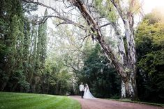 Nekhumbe Wedding — Lwazi Photography