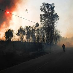 A plane aiding firefighters passes over a forest fire near the towns of Abrunhosa-a-Velha and Torre de Tavares in central Portugal on July 17, 2017. The country's emergency services, helped by cooler temperatures, are gradually bringing under control a spate of wildfires that ignited due to extreme heat.⠀ ⠀ Almost 1,700 firefighters are battling eight large blazes in the countryside with 20 water-dropping aircraft, the Associated Press reports. Seven others are still being tamed and 19 are…