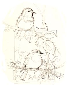 how to draw birds in trees