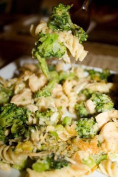 chicken broccoli casserole, thinking about trying this with brown rice in place of the noodles