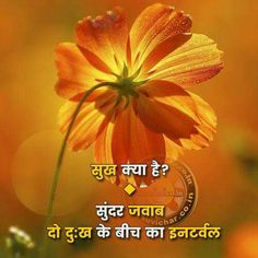 Good Morning Messages, Good Morning Images, Good Morning Quotes, Deep Words, True Words, Superb Quotes, Friendship Shayari, Indian Quotes, Zindagi Quotes