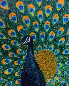 Peacock - Painting by Vicki Maheu