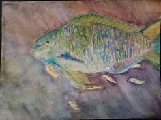 Queen Parrotfish.  Watercolor.  By Mimi Smith. 2014.