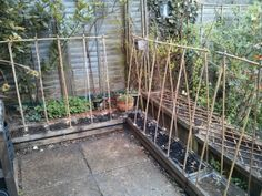 The shed and beyond.: My inner womble strikes again . Allotments, Strikes Again, Wood Turning, Railroad Tracks, Diy And Crafts, Shed, Gardening, Turning, Lawn And Garden