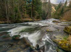 S.Fork Walla Walla River - The beautiful South Fork of the Walla Walla River in the Blue Mountains of NE Oregon.