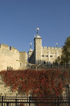 Image galleries and information about my visited World Heritage Sites. - Details for the World Heritage Site 'Tower of London' in London, England William The Conqueror, Tower Of London, World Heritage Sites, London England, Great Britain, Louvre, History, Architecture, Gallery