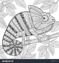 Illustration about Chameleon in zentangle style. Adult antistress coloring page. Black and white hand drawn doodle for coloring book. Illustration of decorative, isolated, chameleon - 89325810 Coloring Book Art, Animal Coloring Pages, Mandala Coloring, Colouring Pages, Adult Coloring Pages, Mandala Art, Doodle Books, Zentangle Drawings, Zentangles