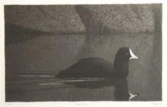 Esa Riippa, uusimmat grafiikat 2011 - 2014 - Rauha Finland, Birds, Canvas, Landscapes, Posters, Painting, Animals, Illustrations, Artists