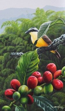 Art licensing company offering bright, vibrant art from artists in Latin America and around the world Coffee Farm, Coffee Plant, Coffee Coffee, Coffee Break, Mural Cafe, Coffee Process, Coffee Artwork, Coffee Flower, Coffee Illustration