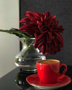 Coffee Gif, Coffee Love, Coffee Cups, Tableware, Plants, Ol, Google, Flowers, Bom Dia