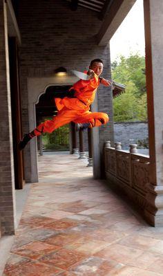 Shaolin Kung Fu - Master Lau