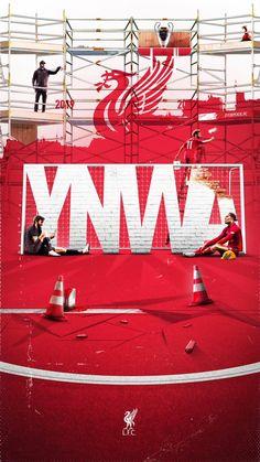Liverpool Memes, Ynwa Liverpool, Liverpool Champions, Liverpool Players, Liverpool Football Club, Liverpool Wallpapers, Liverpool Fc Wallpaper, Lfc Wallpaper, Bussines Ideas