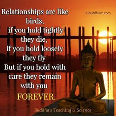 wisdom quotes from the bible Buddhist Words, Buddhist Teachings, Buddhist Quotes, Spiritual Quotes, Buddha Wisdom, Buddha Quote, Buddha Art, Lessons Learned In Life, Life Lessons