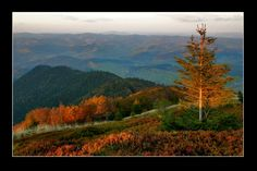 Carpathians  Those colors are incredible