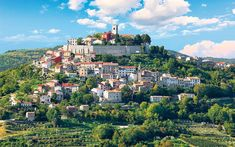 Croatia walking tour: ignorance is bliss in the hills of Istria - Telegraph