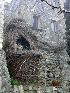Patrick Dougherty stickwork.net