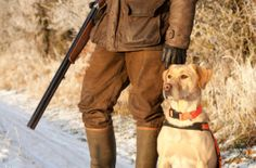 Safety Tips for Your Pets During Hunting Season