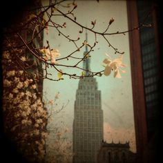 Every time I see a picture of NYC I fall more and more in love with the city!