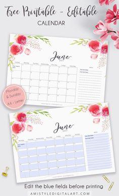 2017 June printable editable calendar