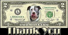 Second Chance Rescue NYC Dogs Please consider donating 2$ for 2$ Tuesday. If everyone donated $2 we would have over one million dollars donated in one day! Imagine the miracles we could help to create! http://www.nycsecondchancerescue.org/donate/ Mailing addy: SCR PO BOx 570701 Whitestone, NY 11357 https://www.facebook.com/SecondChanceRescueNycDogs/photos/a.268618996580496.54842.268612969914432/601574549951604/?type=1
