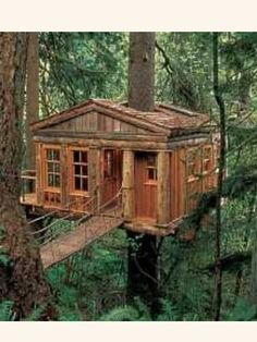 Perfect Simple Tree House Pictures Pin And More On Cabin Inspiration