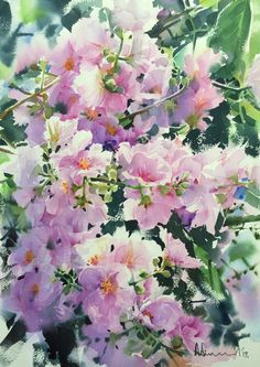 """Blooming"" by Adisorn Pornsirikarn Watercolor on paper, 51 x 36 cm, ดอกอินทนิล, Lagerstroemia speciosa, 2017."