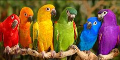 """Doesn't matter what """"color"""" u are, WE are all the SAME!!!"""