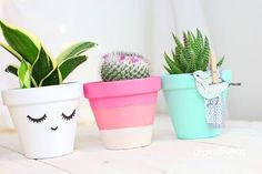 Pots can be decorated with clipped or glued stuff Painted Flower Pots, Painted Pots, Cacti And Succulents, Potted Plants, Diy Planters, Terracotta Pots, Garden Pots, Bunt, Planting Flowers