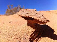 Le sable façonné par le vent