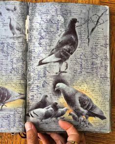 Inside the Well-Traveled Sketchbooks of Artist Dina Brodsky - Imgur