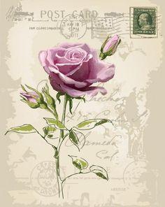 插画手绘 玫瑰 手机壁纸 水粉画 水彩 复古