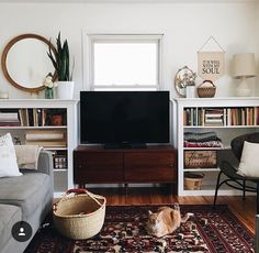 Living room with TV featured front and center, white walls, white bookcases, hardwood accents, Persian rug, red, grey couch